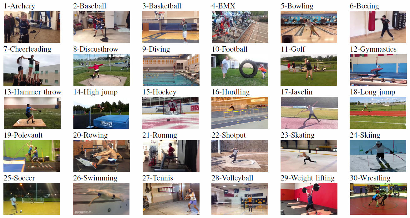 Sports Videos in the Wild (SVW): A Video Dataset for Sports